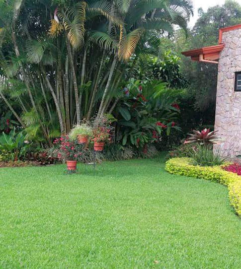Mantenimiento de zonas verdes y jardines